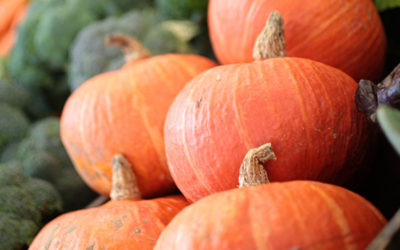 groentepakket week 41 2019